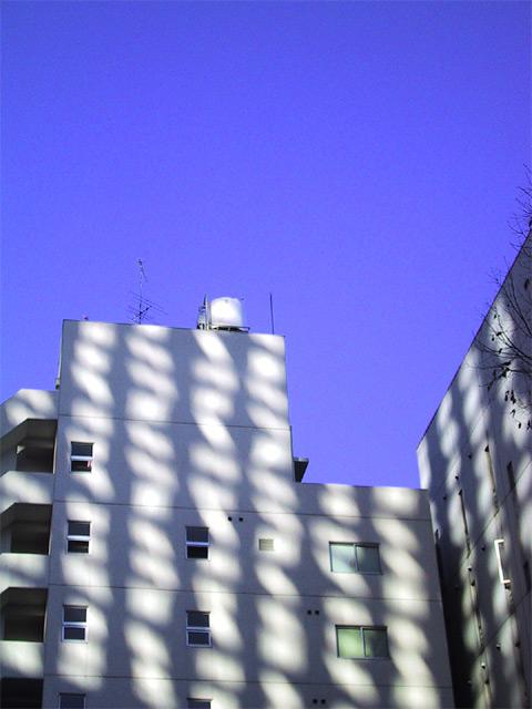 shining building
