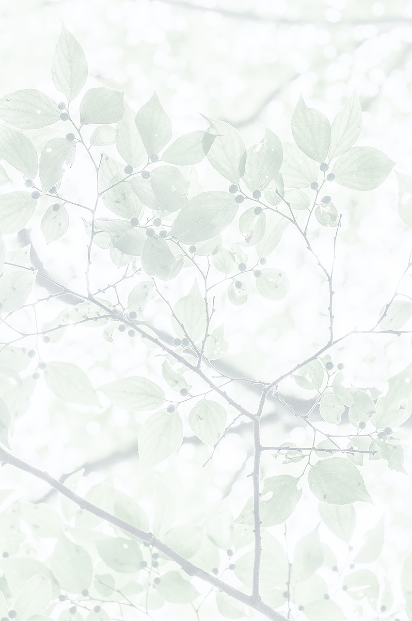 "drops note ""song"" 〜風景は音を呼ぶ〜"