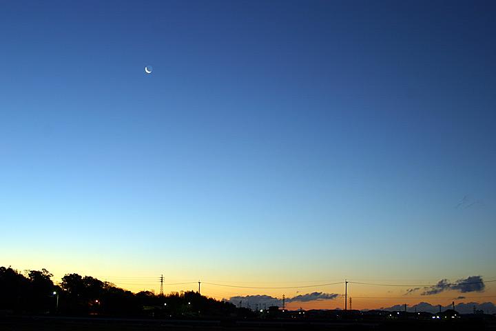 mon petite moon