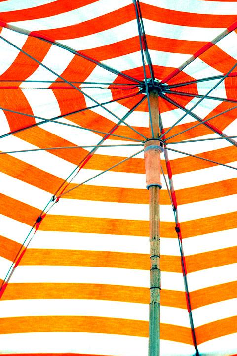 concentric circular border parasol