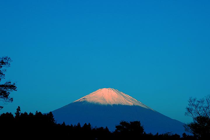 matin japon