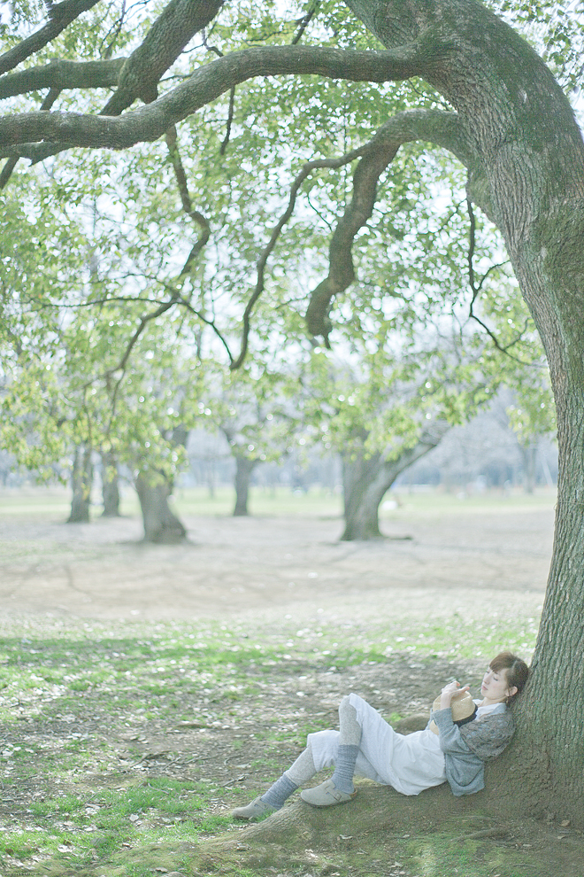 daydream forest inn shibuya